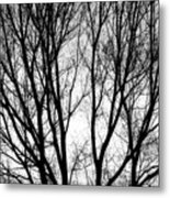 Tree Silhouettes In Black And White Metal Print