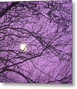 Tree Silhouettes With Rising Moon In Cades Cove, Great Smoky Mountains National Park, Tennessee, Usa Metal Print by Altrendo Nature