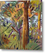 Tree Sketch Metal Print