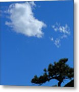 Tree Sky Cloud Metal Print