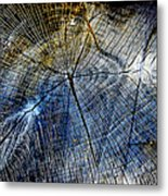 Tree Slab - 5025 Metal Print