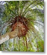 Tree Spray Metal Print