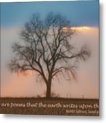 Tree - Sunset - Quotation Metal Print