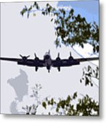 Tree Top Fly Er Metal Print