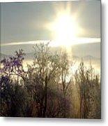 Tree Top Sunset 4 Metal Print