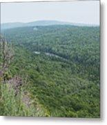 Tree Top Valley Metal Print