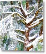 Tree With White Fluffy Snow Metal Print