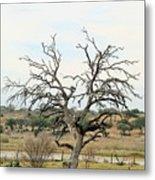 Tree009 Metal Print
