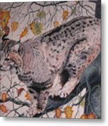 Treed Metal Print by John Huntsman