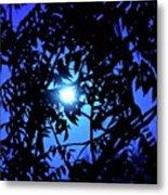 Treed Moon Metal Print