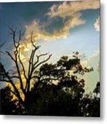 Treeline Silhouette Metal Print