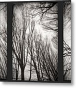 Treeology Metal Print