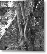 Trees And Brick Crosses Metal Print