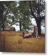 Trees And Cabin Metal Print