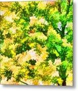 Trees And Leaves 1 Metal Print