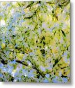 Trees And Leaves Metal Print