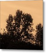 Trees And Geese In Sepia Tone Metal Print