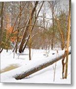 Trees And Snow Metal Print