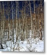 Trees And Something In The Snow Metal Print