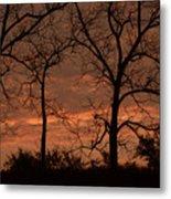 Trees And Sunrise Metal Print