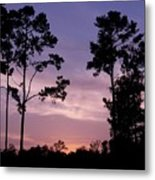 Trees And Sunset Metal Print