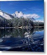 Trees At The Lakeside, Yellowstone Metal Print
