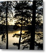 Trees By The Lake Metal Print