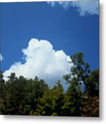 Trees, Clouds, And Sky Metal Print