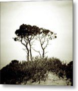 Trees Extreme Metal Print