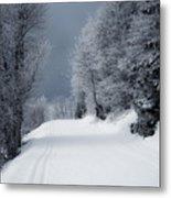 Trees Hills And Snow Metal Print