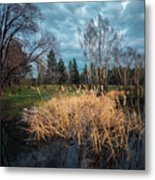 Trees In A Fog On A Background Of The River In Summer Morning  Metal Print
