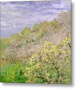 Trees In Blossom Metal Print