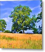 Trees In Field Metal Print