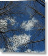 Trees In The Spring With Clouds Metal Print