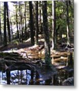 Trees In Water Metal Print