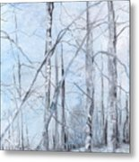 Trees In Winter Snow Metal Print