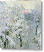 Trees In Wintry Silver Metal Print