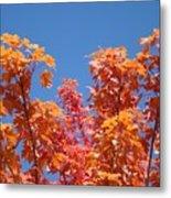 Trees Landscape Art Print Fall Tree Leaves Baslee Troutman Metal Print