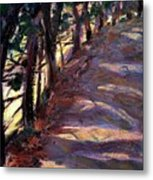 Trees Line The Road Metal Print