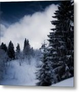 Trees Mountains And More Trees Metal Print