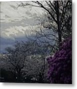 Trees Of Spring Metal Print