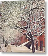 Trees On Franklin Metal Print