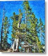 Trees On The Edge 2 Metal Print