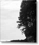 Trees Over The Ocean Metal Print