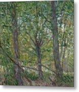 Trees Paris, July 1887 Vincent Van Gogh 1853  1890 Metal Print