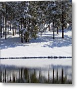 Trees Reflecting In Duck Pond In Colorado Snow Metal Print