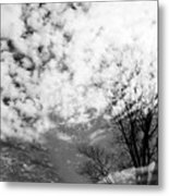 Tree's Spirit Metal Print