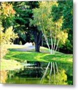 Trees With Mirror Lake 2 Metal Print