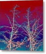 Treetops 4 Metal Print