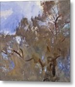 Treetops Against Sky Metal Print